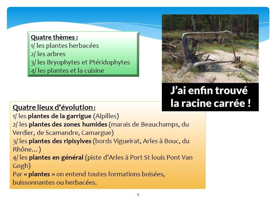 Diapositive09