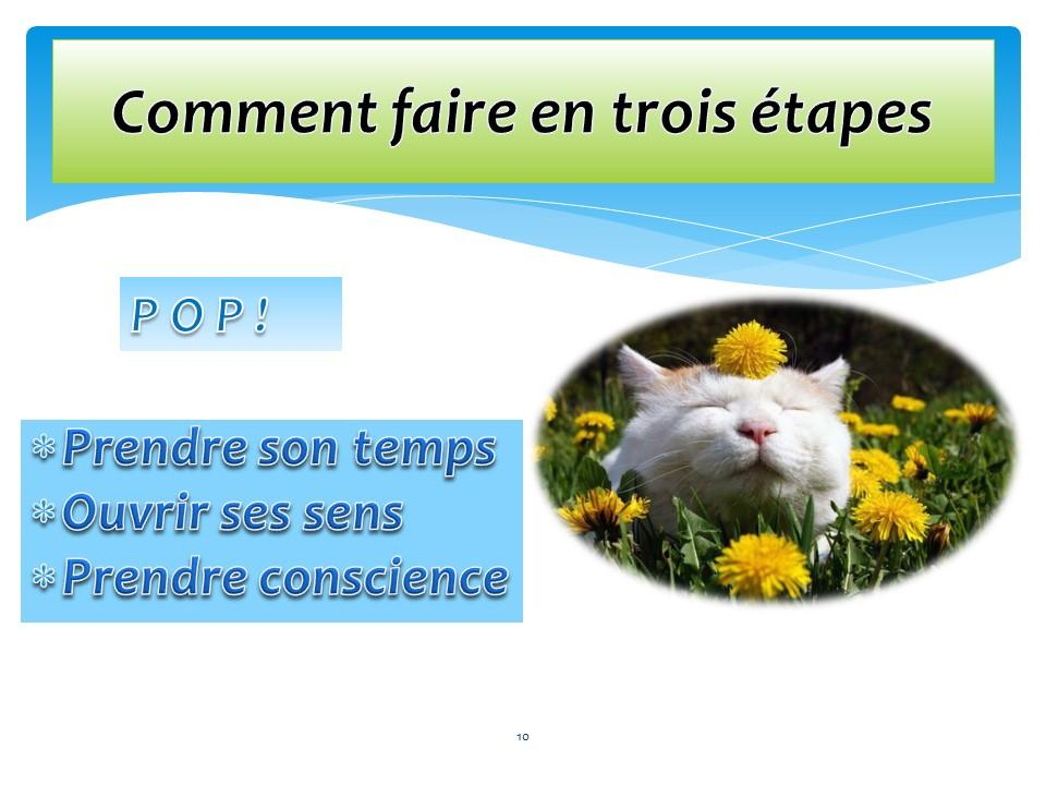 Diapositive10 1