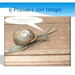 Diapositive11 1