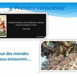Diapositive13 1