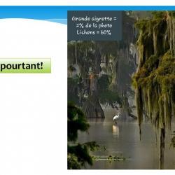 Diapositive16 1