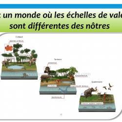 Diapositive17 1