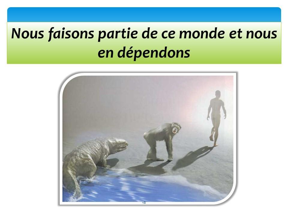Diapositive18 1