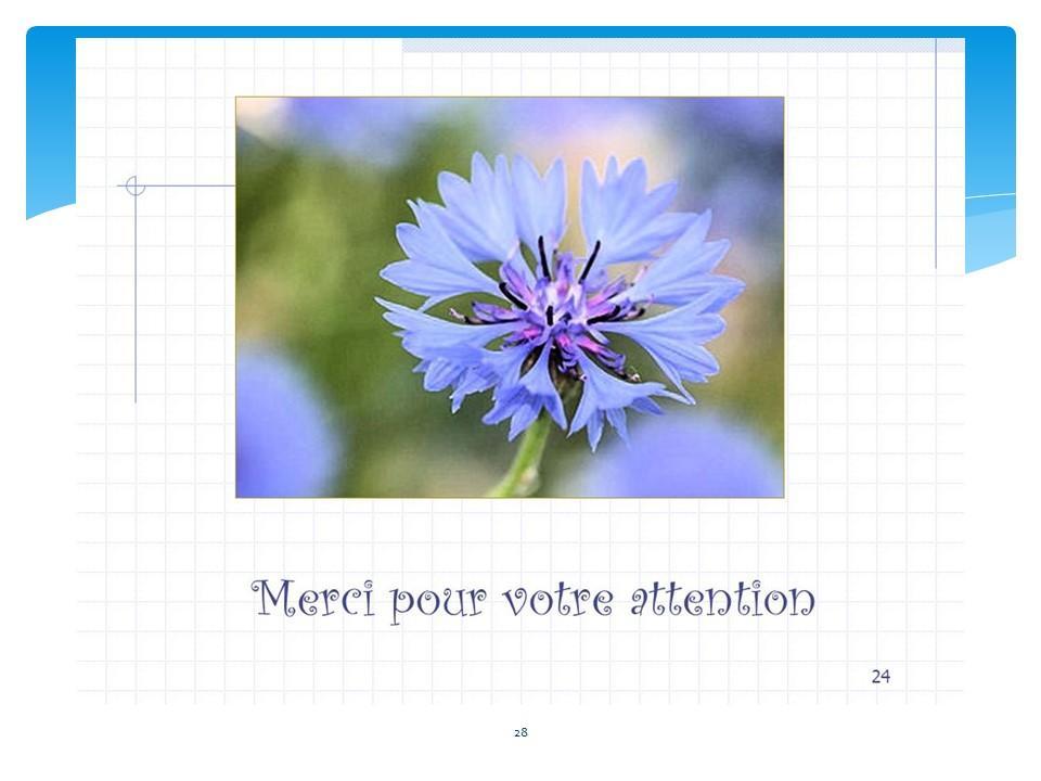 Diapositive28 1